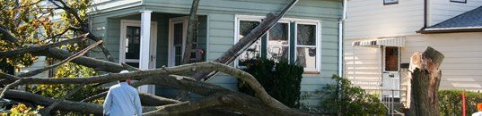 Storm Damage Cleanups