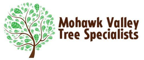 Mohawk Valley Tree Specialists - Logo