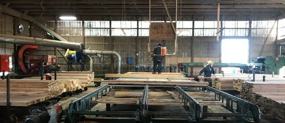 on site sawmill