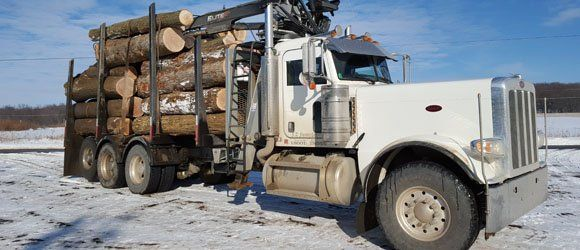 truck carrying tree logs