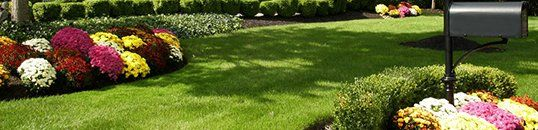 Lawn and Landscaping Services