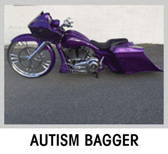 Autism Bagger | Motorcycles | Motorbikes