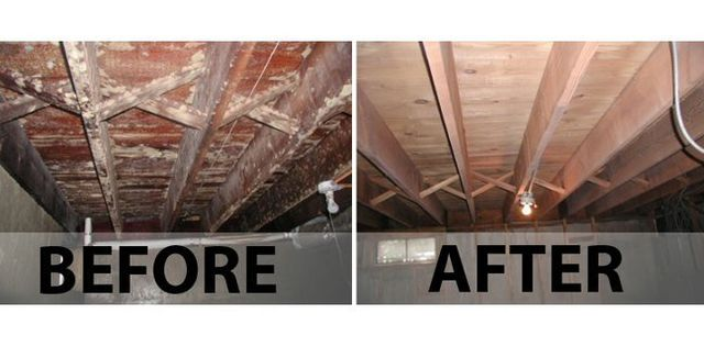 Mold Remedation Mold Prevention Kennesaw Ga