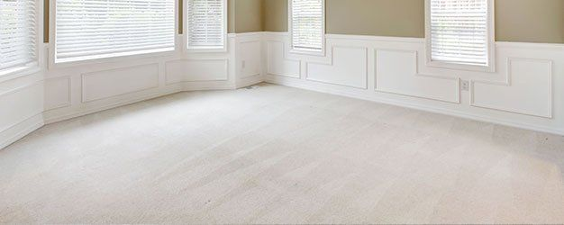 Bane clene systems the bane clean way indianapolis in clean carpet solutioingenieria Gallery