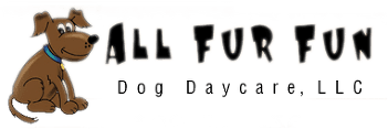All Fur Fun Dog Daycare LLC - Logo
