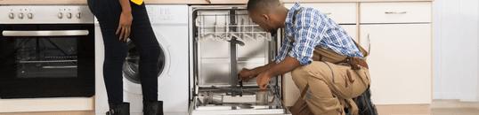 Dishwasher Servicing