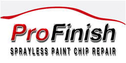 Pro Finish Sprayless Paint Chip Repair