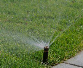 Lawn spraying