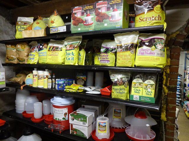 Chicken Feed Gamebird Feed Bird Feed Best Pet Store Media