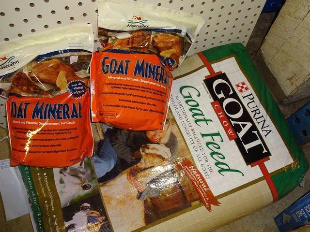 Deer feed, goat sheep llama feed, best bird feed, CBD Oil