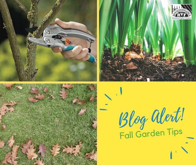 Fall Gardening Tips 1