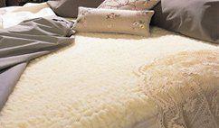 Snug Fleece Woolens