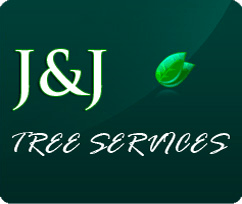 J And J >> J J Tree Services Tree Services Chicago Il