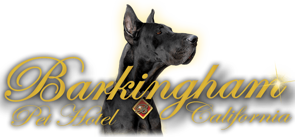Barkingham Pet Hotel California — logo