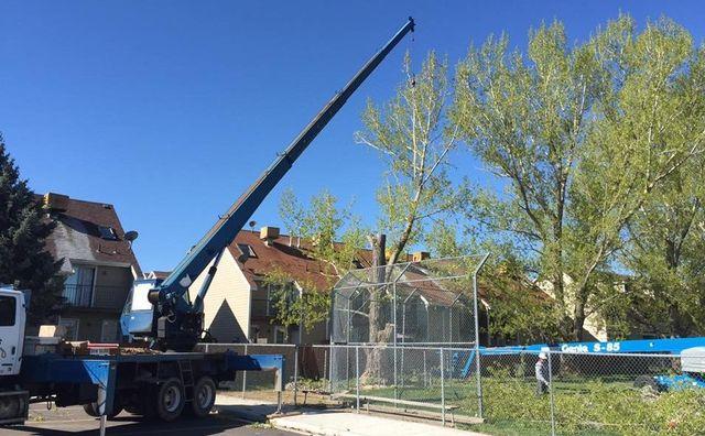 Hang M High Crane Service | Crane Rentals | West Haven, UT