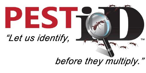 Pest iD - Logo