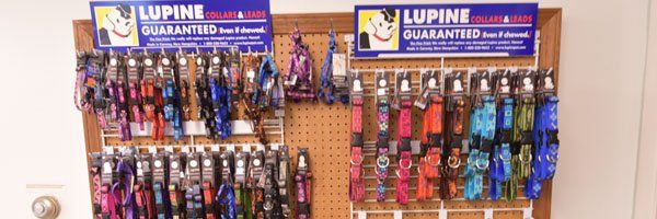 Lupine pet leashes and collars