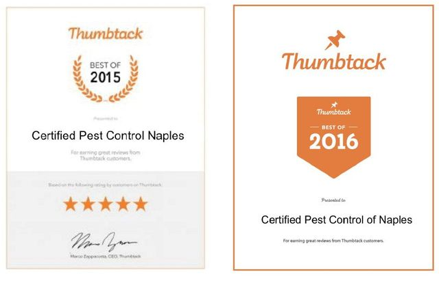 About Certified Pest Control of Naples | Naples, FL Pests