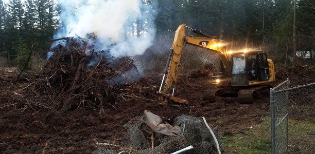 land clearing by Nylund Inc